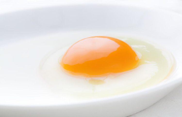 妊娠 初期 生 卵