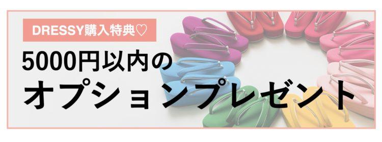 DRESSY購入特典♡ 5000円以内のオプションプレゼント